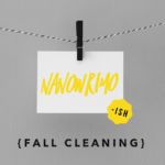 Days 18 & 19: NaNoWriMo {Fall Cleaning}